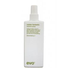 EVO mister fantastic blowout spray - Универсальный стайлинг спрей для волос 200мл